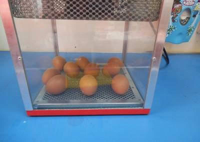 Chicks at Greatworth PreSchool Near Brackley