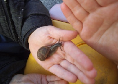Snail Child at Greatworth PreSchool Near Brackley